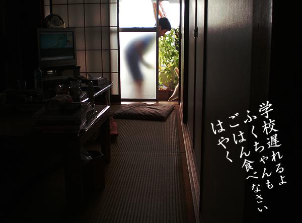20090901_074-1.jpg