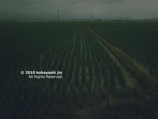 2010jin 016-600.jpg